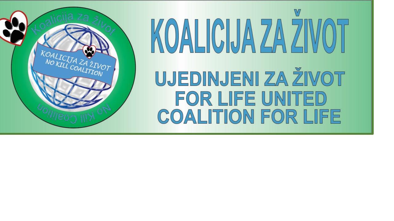 klc-logo-info
