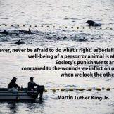 Uradite ono što je ispravno Martin Luther King