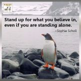 stand up Ustani