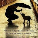 Ljudsko srce