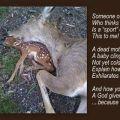 mrtva srna i lov